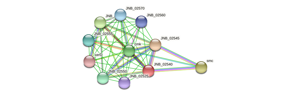 JNB_02540 protein (Janibacter sp. HTCC2649) - STRING interaction network