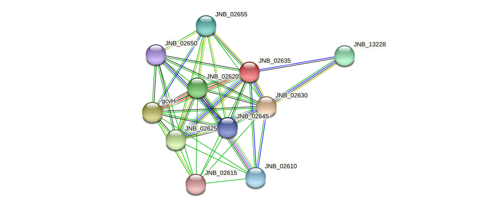 JNB_02635 protein (Janibacter sp. HTCC2649) - STRING interaction network