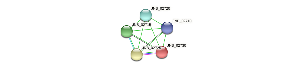 JNB_02730 protein (Janibacter sp. HTCC2649) - STRING interaction network