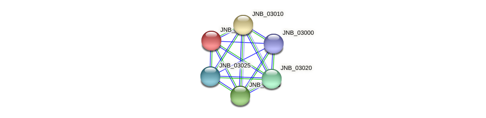 JNB_03005 protein (Janibacter sp. HTCC2649) - STRING interaction network