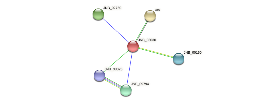 JNB_03030 protein (Janibacter sp. HTCC2649) - STRING interaction network