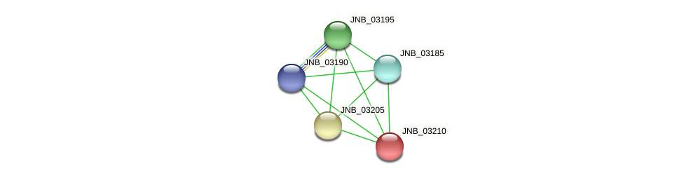 JNB_03210 protein (Janibacter sp. HTCC2649) - STRING interaction network