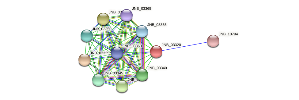 JNB_03320 protein (Janibacter sp. HTCC2649) - STRING interaction network