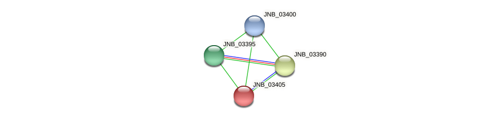 JNB_03405 protein (Janibacter sp. HTCC2649) - STRING interaction network