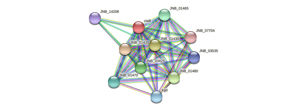 ctaB protein (Janibacter sp. HTCC2649) - STRING interaction network