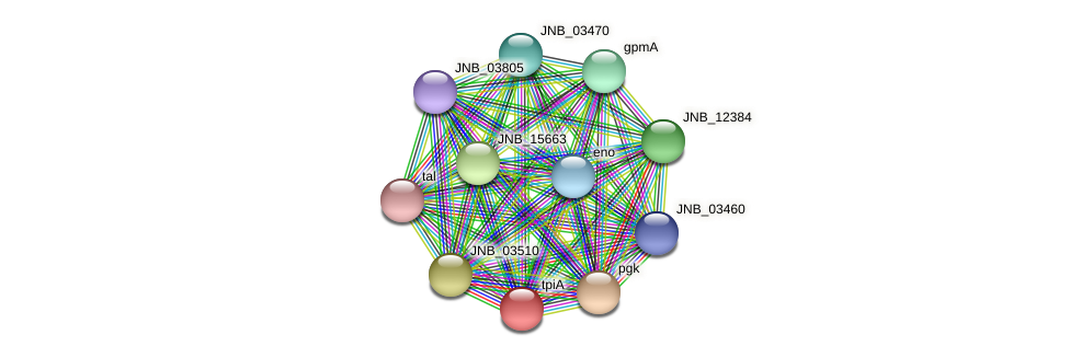 tpiA protein (Janibacter sp. HTCC2649) - STRING interaction network