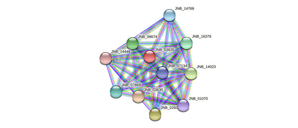 JNB_03635 protein (Janibacter sp. HTCC2649) - STRING interaction network