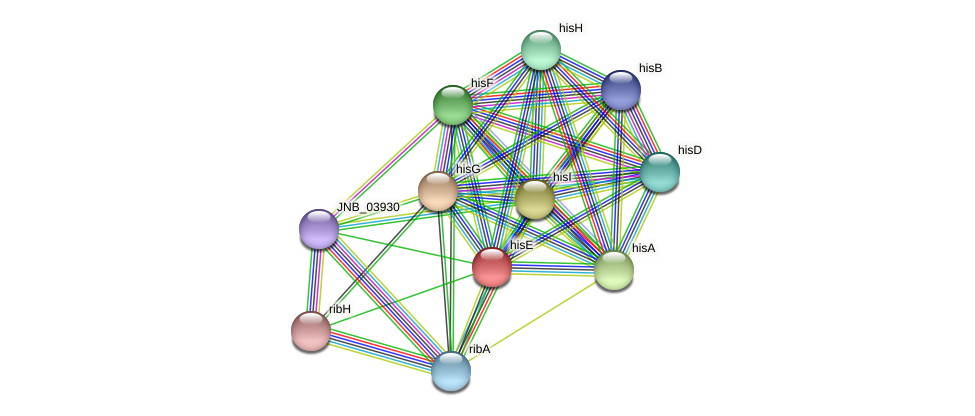 hisE protein (Janibacter sp. HTCC2649) - STRING interaction network