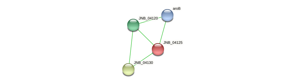 JNB_04125 protein (Janibacter sp. HTCC2649) - STRING interaction network