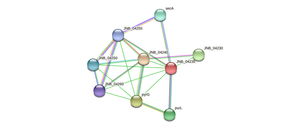 JNB_04235 protein (Janibacter sp. HTCC2649) - STRING interaction network
