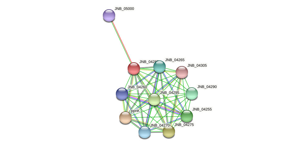 JNB_04285 protein (Janibacter sp. HTCC2649) - STRING interaction network