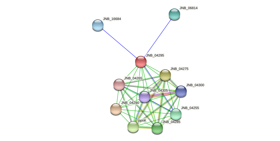 JNB_04295 protein (Janibacter sp. HTCC2649) - STRING interaction network