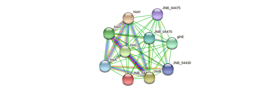 JNB_04445 protein (Janibacter sp. HTCC2649) - STRING interaction network