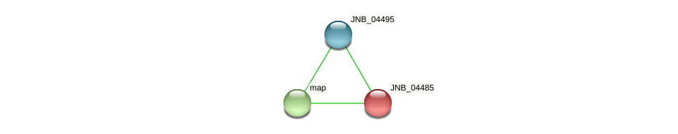 JNB_04485 protein (Janibacter sp. HTCC2649) - STRING interaction network