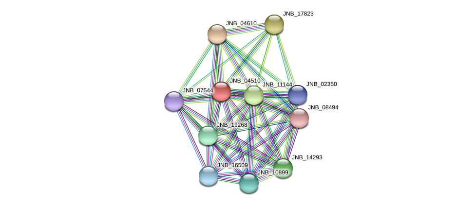 JNB_04510 protein (Janibacter sp. HTCC2649) - STRING interaction network