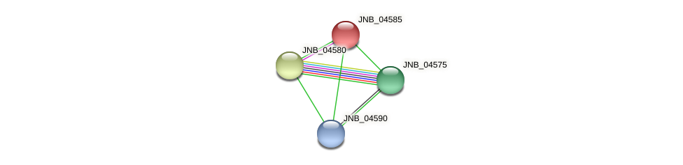 JNB_04585 protein (Janibacter sp. HTCC2649) - STRING interaction network