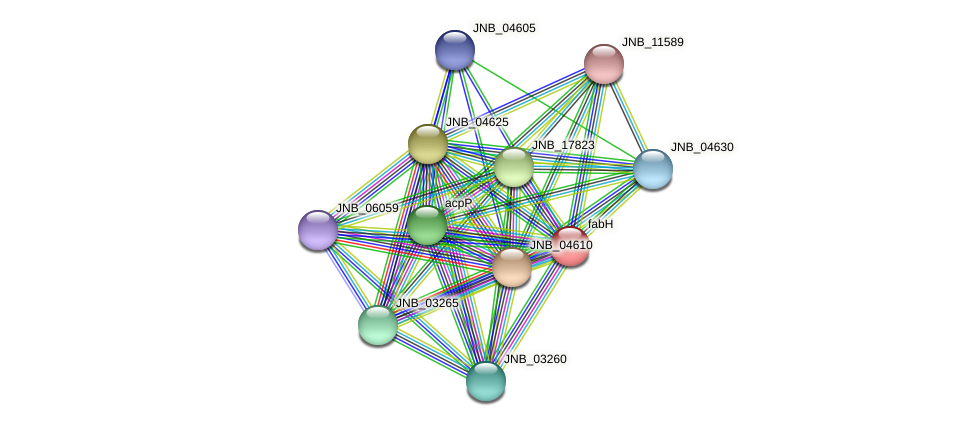 fabH protein (Janibacter sp. HTCC2649) - STRING interaction network