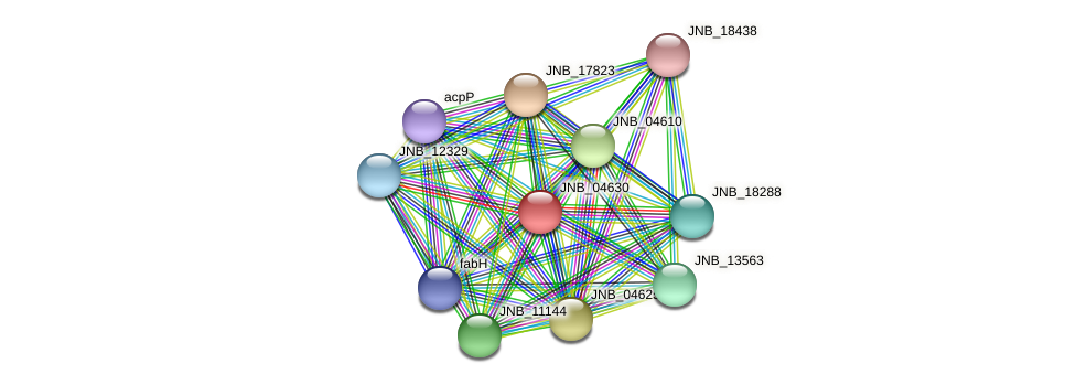 JNB_04630 protein (Janibacter sp. HTCC2649) - STRING interaction network