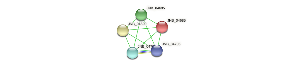 JNB_04685 protein (Janibacter sp. HTCC2649) - STRING interaction network