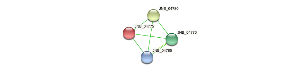 JNB_04775 protein (Janibacter sp. HTCC2649) - STRING interaction network
