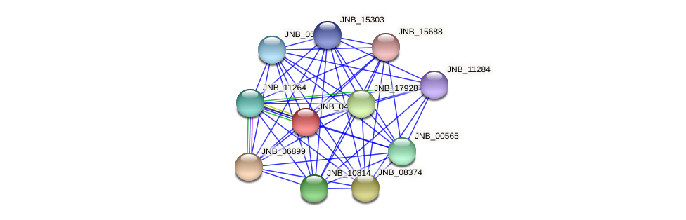 JNB_04795 protein (Janibacter sp. HTCC2649) - STRING interaction network