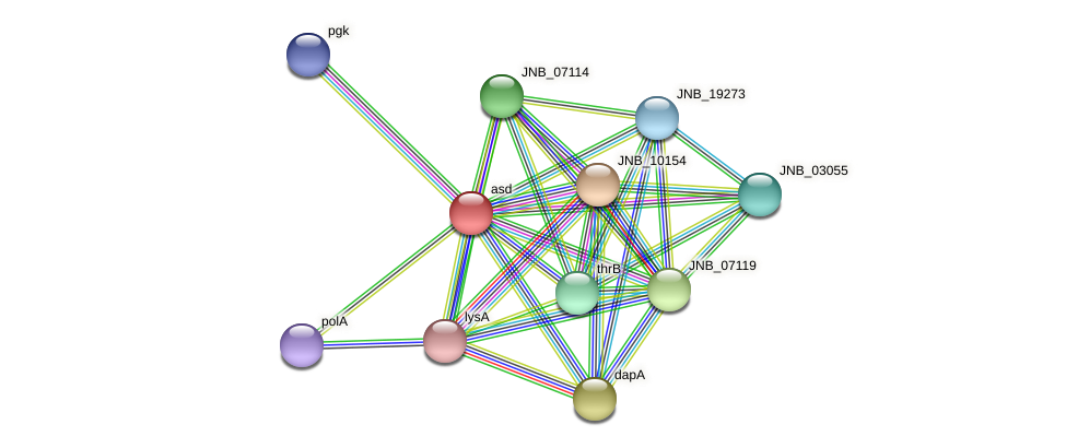 asd protein (Janibacter sp. HTCC2649) - STRING interaction network
