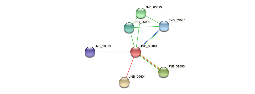 JNB_05100 protein (Janibacter sp. HTCC2649) - STRING interaction network