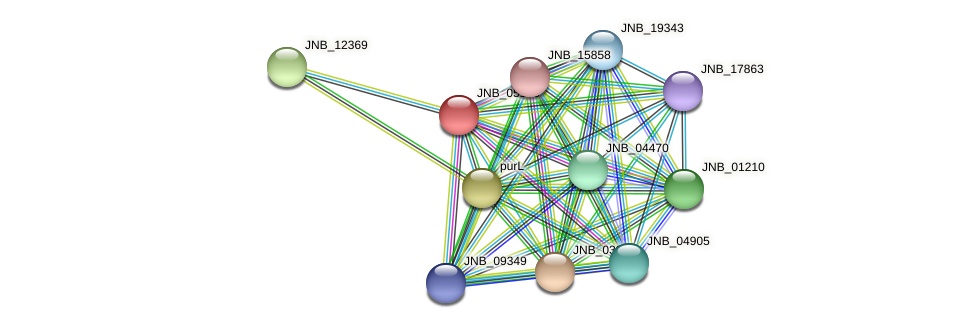 JNB_05155 protein (Janibacter sp. HTCC2649) - STRING interaction network