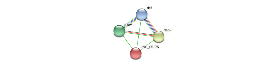JNB_05175 protein (Janibacter sp. HTCC2649) - STRING interaction network