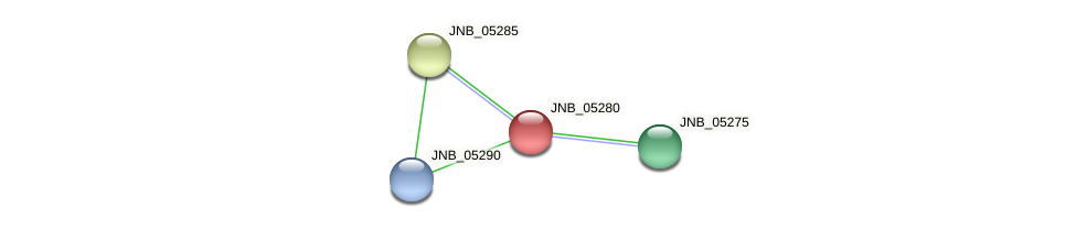 JNB_05280 protein (Janibacter sp. HTCC2649) - STRING interaction network