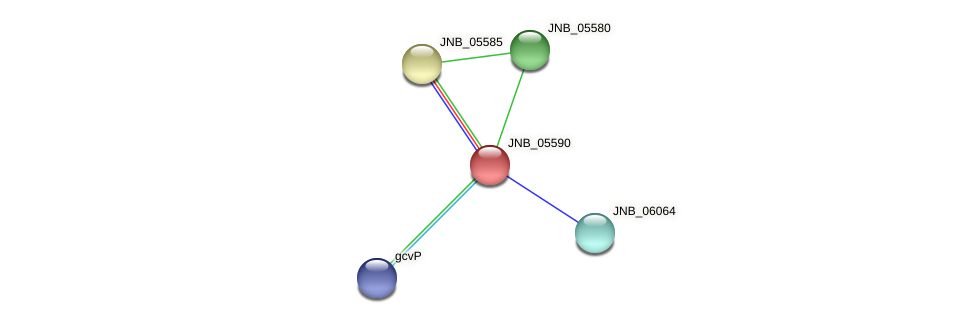 JNB_05590 protein (Janibacter sp. HTCC2649) - STRING interaction network