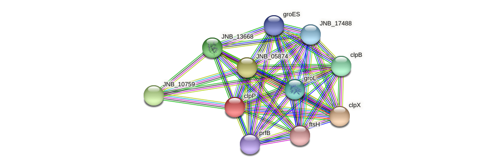 JNB_05869 protein (Janibacter sp. HTCC2649) - STRING interaction network