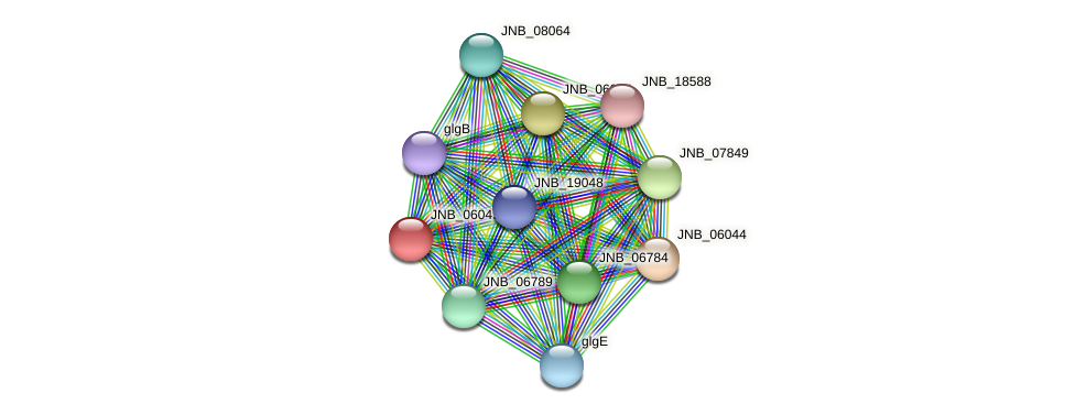 JNB_06049 protein (Janibacter sp. HTCC2649) - STRING interaction network