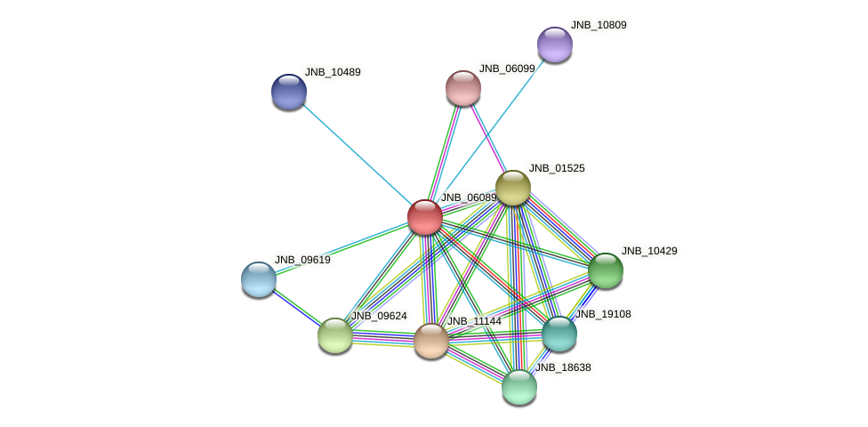 JNB_06089 protein (Janibacter sp. HTCC2649) - STRING interaction network