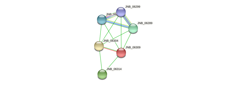 JNB_06309 protein (Janibacter sp. HTCC2649) - STRING interaction network
