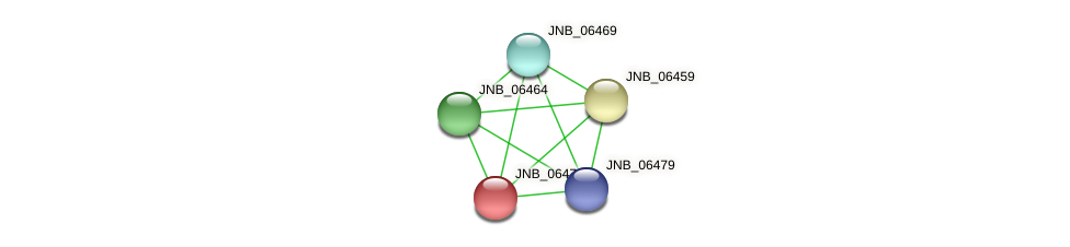 JNB_06474 protein (Janibacter sp. HTCC2649) - STRING interaction network