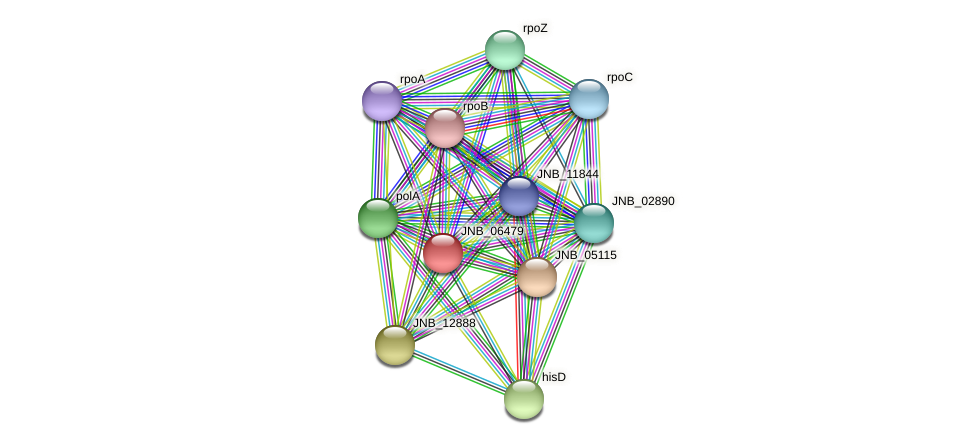 JNB_06479 protein (Janibacter sp. HTCC2649) - STRING interaction network