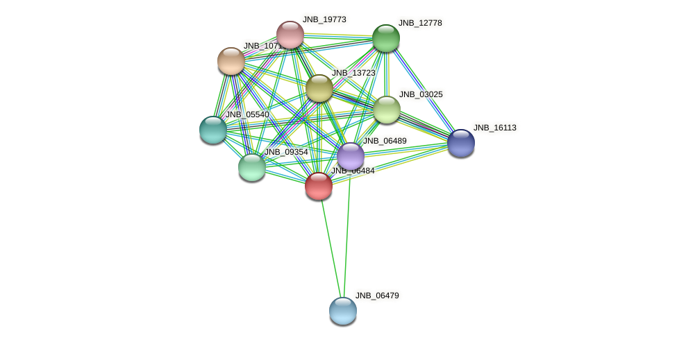 JNB_06484 protein (Janibacter sp. HTCC2649) - STRING interaction network
