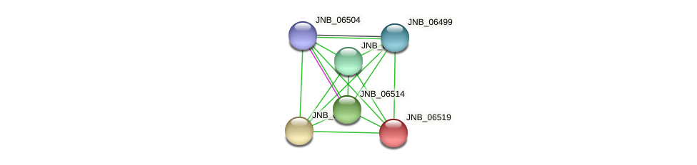 JNB_06519 protein (Janibacter sp. HTCC2649) - STRING interaction network