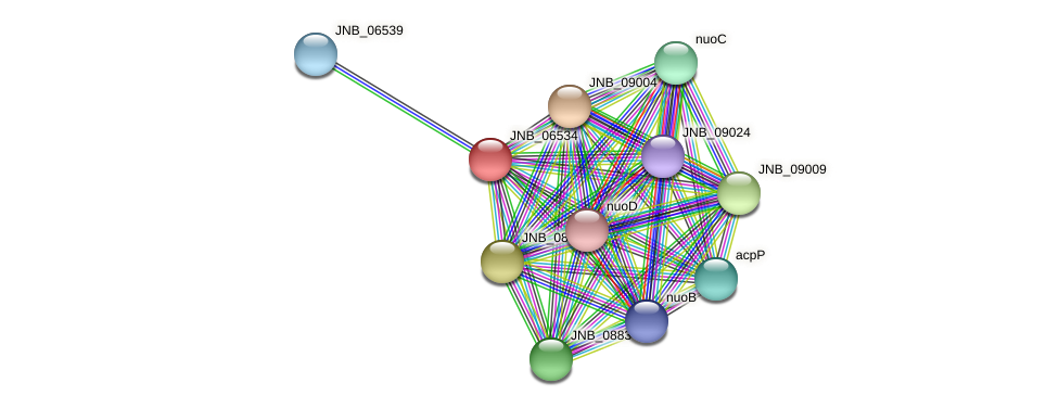 JNB_06534 protein (Janibacter sp. HTCC2649) - STRING interaction network