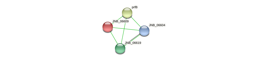 JNB_06609 protein (Janibacter sp. HTCC2649) - STRING interaction network