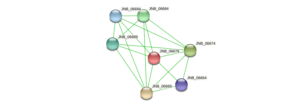 JNB_06679 protein (Janibacter sp. HTCC2649) - STRING interaction network