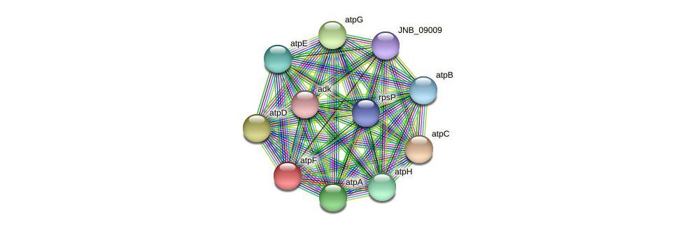 atpF protein (Janibacter sp. HTCC2649) - STRING interaction network