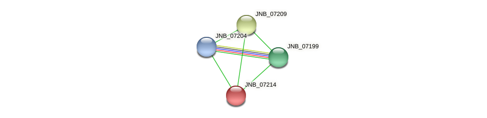 JNB_07214 protein (Janibacter sp. HTCC2649) - STRING interaction network