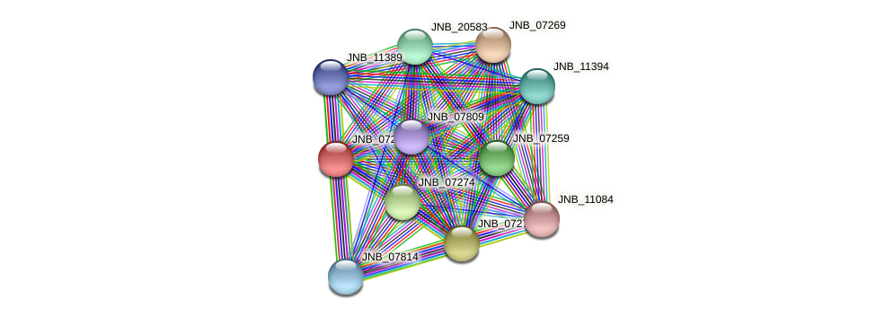 JNB_07264 protein (Janibacter sp. HTCC2649) - STRING interaction network