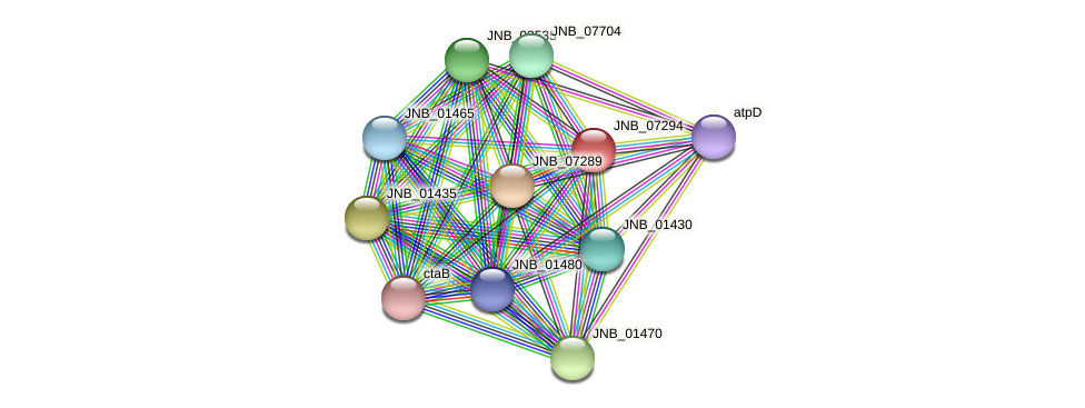 JNB_07294 protein (Janibacter sp. HTCC2649) - STRING interaction network