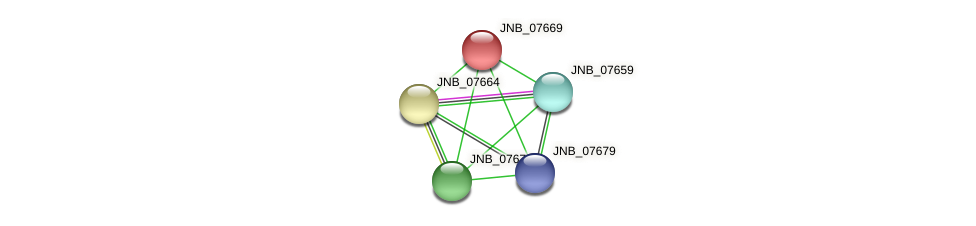 JNB_07669 protein (Janibacter sp. HTCC2649) - STRING interaction network