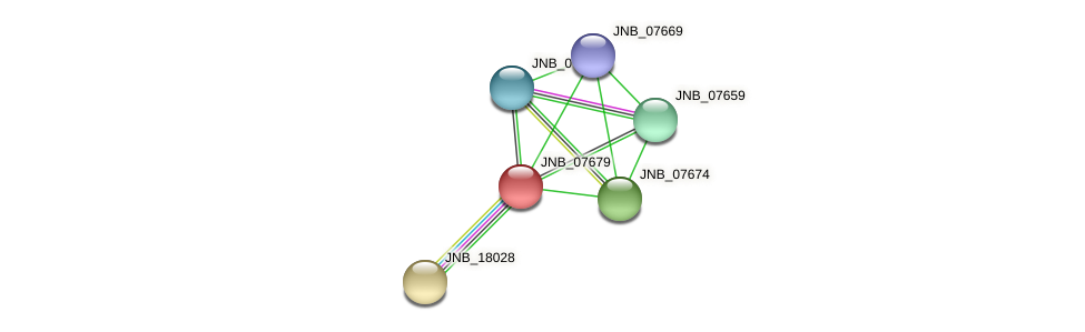 JNB_07679 protein (Janibacter sp. HTCC2649) - STRING interaction network