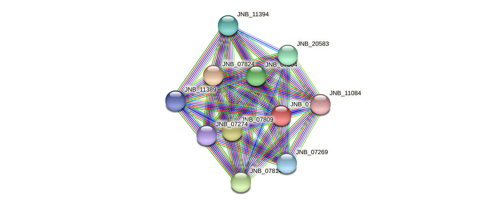 JNB_07819 protein (Janibacter sp. HTCC2649) - STRING interaction network
