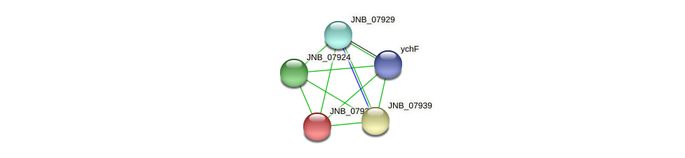 JNB_07934 protein (Janibacter sp. HTCC2649) - STRING interaction network